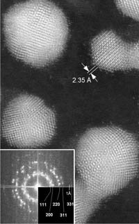 STEM  gold particle image